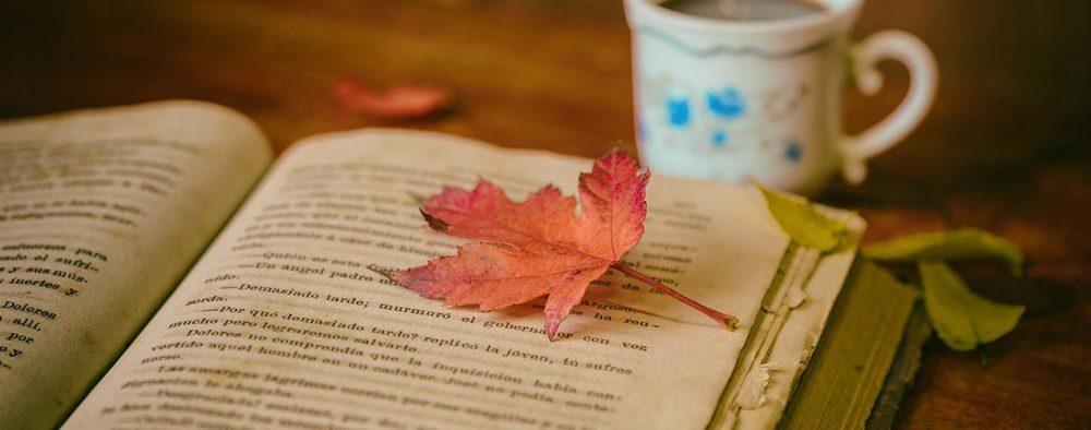 Gebrauchtes Buch liegt aufgeschlagen auf Tisch